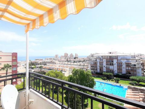 Apartment - For rent short term - Torrevieja - Torrevieja